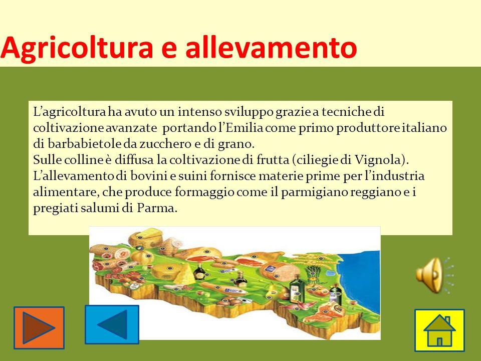 Attività economiche Agricoltura e allevamento Agricoltura e allevamento Le industrie
