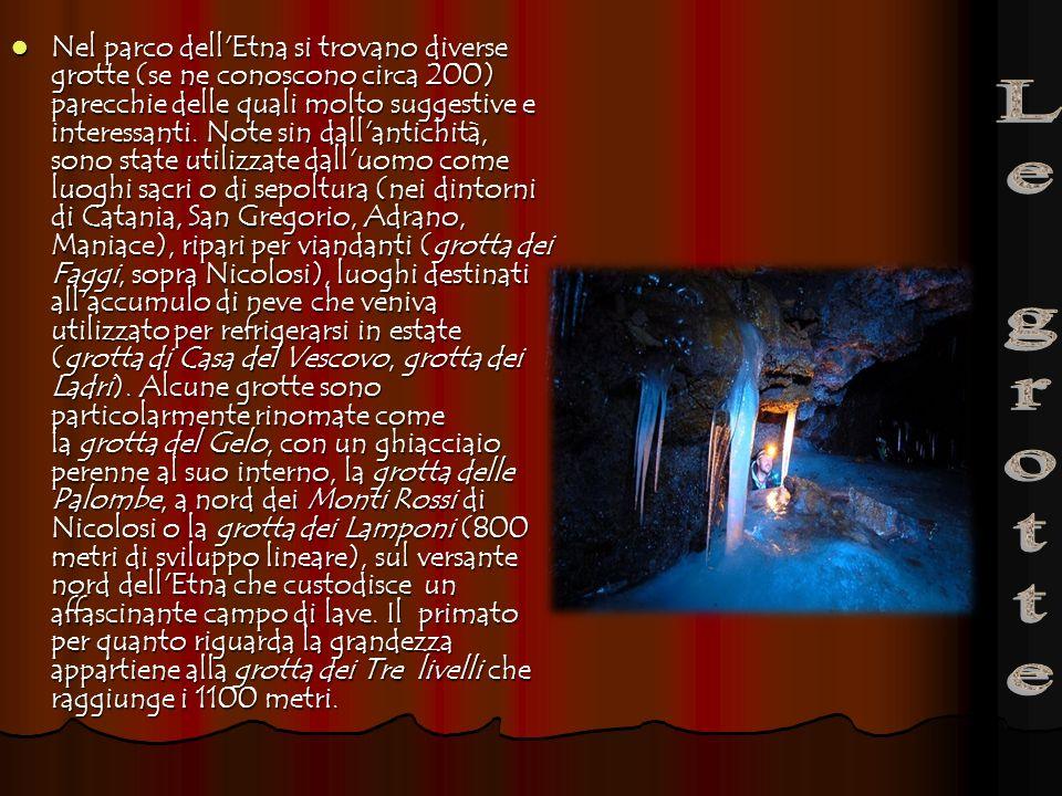 Nel parco dell'Etna si trovano diverse grotte (se ne conoscono circa 200) parecchie delle quali molto suggestive e interessanti. Note sin dall'antichi