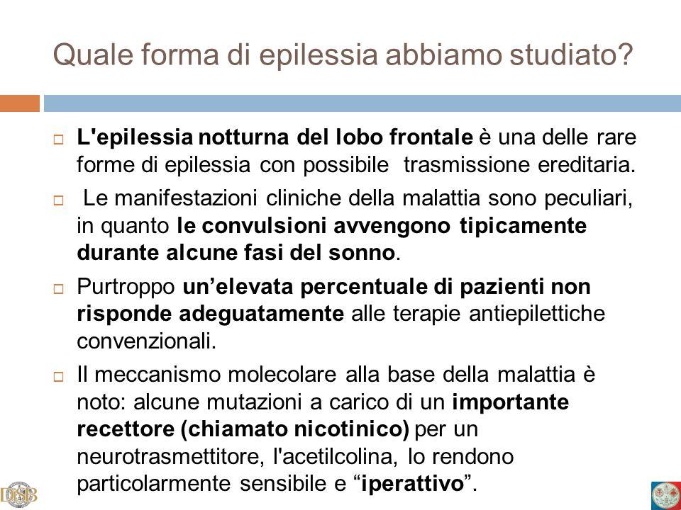 Quale forma di epilessia abbiamo studiato? L'epilessia notturna del lobo frontale è una delle rare forme di epilessia con possibile trasmissione eredi