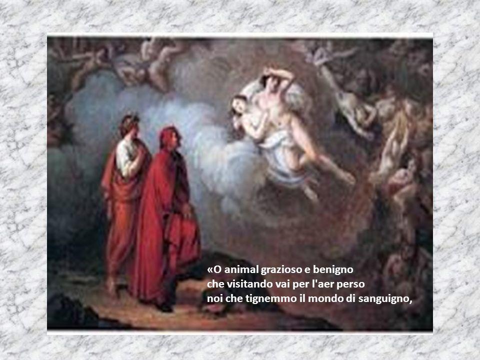 «O animal grazioso e benigno che visitando vai per l'aer perso noi che tignemmo il mondo di sanguigno,