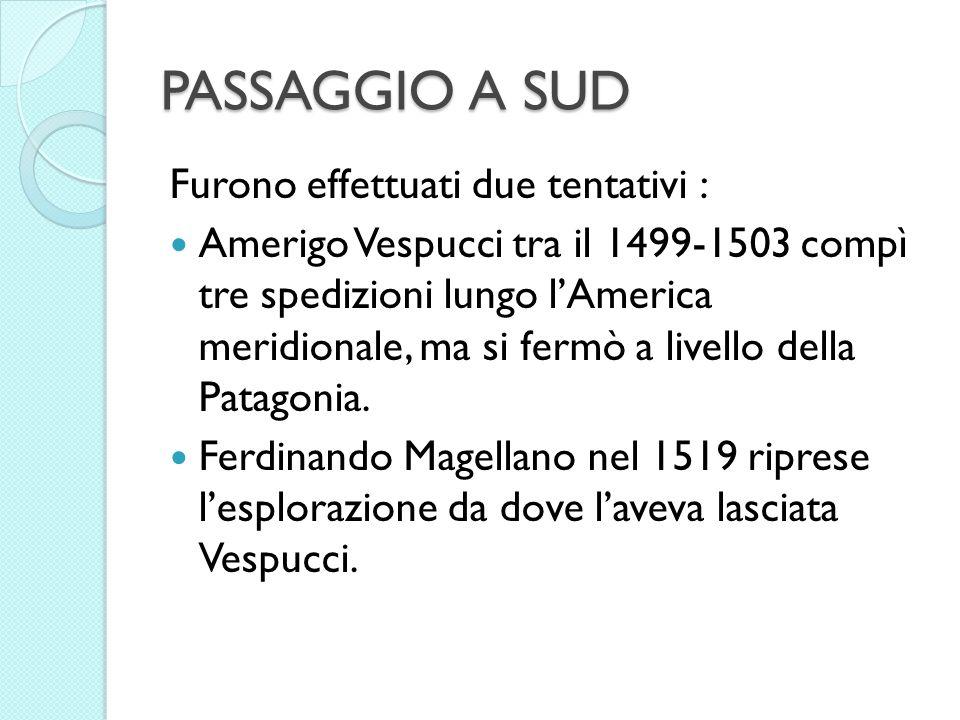 PASSAGGIO A SUD Furono effettuati due tentativi : Amerigo Vespucci tra il 1499-1503 compì tre spedizioni lungo lAmerica meridionale, ma si fermò a liv