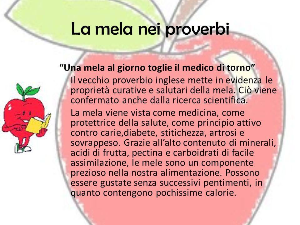 La mela nei proverbi Una mela al giorno toglie il medico di torno Il vecchio proverbio inglese mette in evidenza le proprietà curative e salutari dell