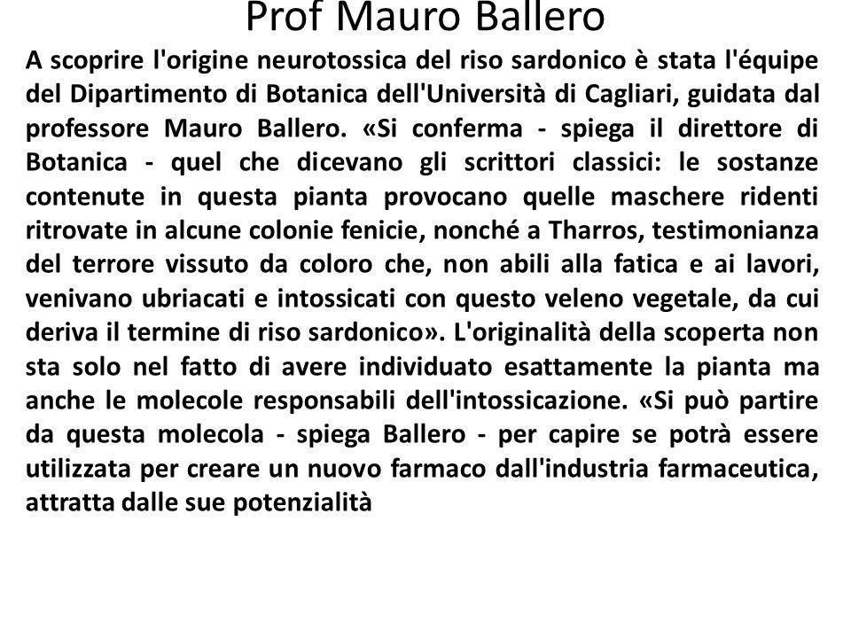 Prof Mauro Ballero A scoprire l'origine neurotossica del riso sardonico è stata l'équipe del Dipartimento di Botanica dell'Università di Cagliari, gui