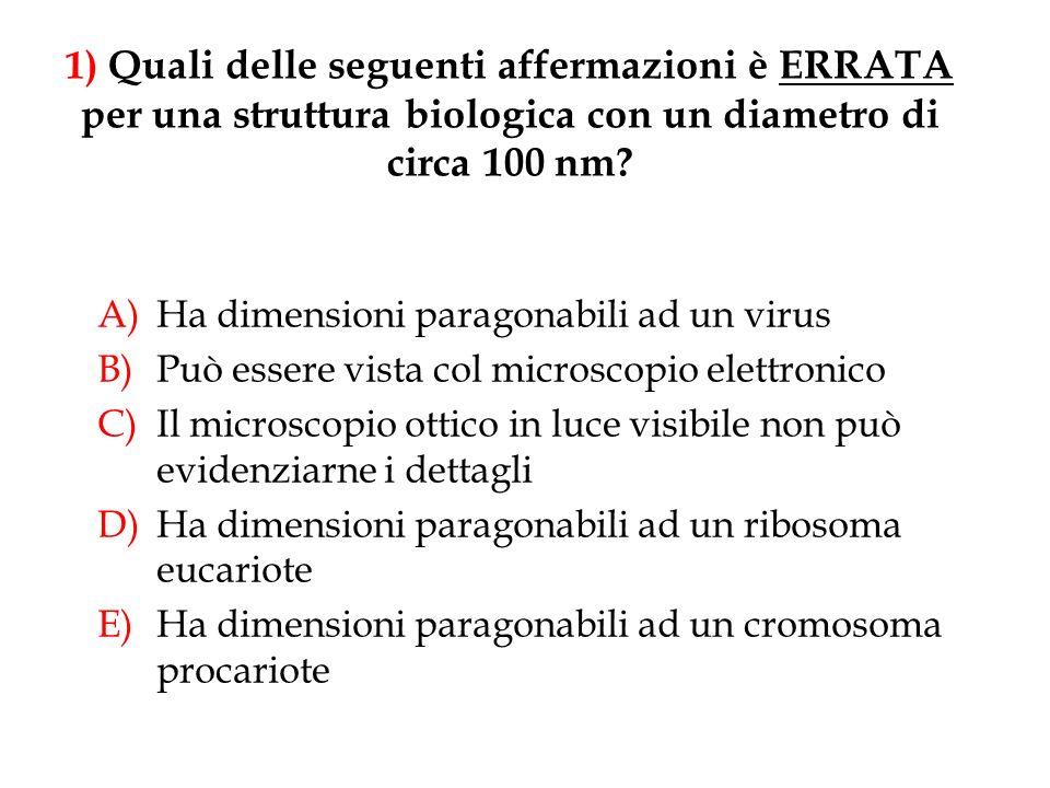 A)Ha dimensioni paragonabili ad un virus B)Può essere vista col microscopio elettronico C)Il microscopio ottico in luce visibile non può evidenziarne
