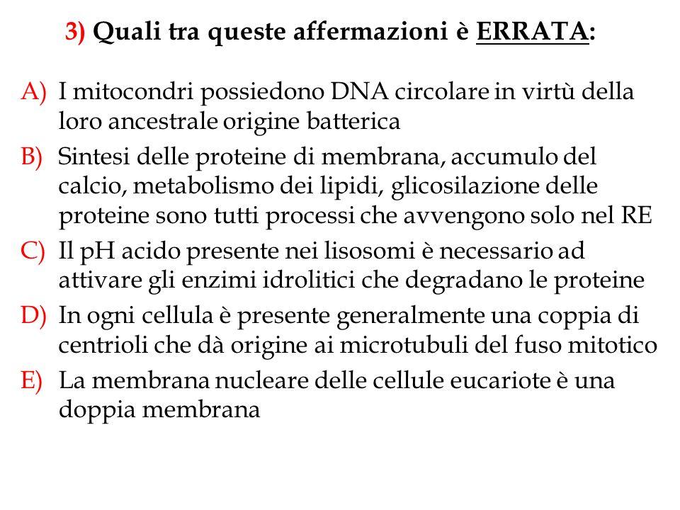 A)I mitocondri possiedono DNA circolare in virtù della loro ancestrale origine batterica B)Sintesi delle proteine di membrana, accumulo del calcio, me
