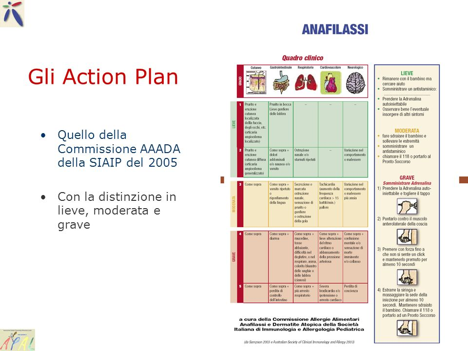 Gli Action Plan Quello della Commissione AAADA della SIAIP del 2005 Con la distinzione in lieve, moderata e grave