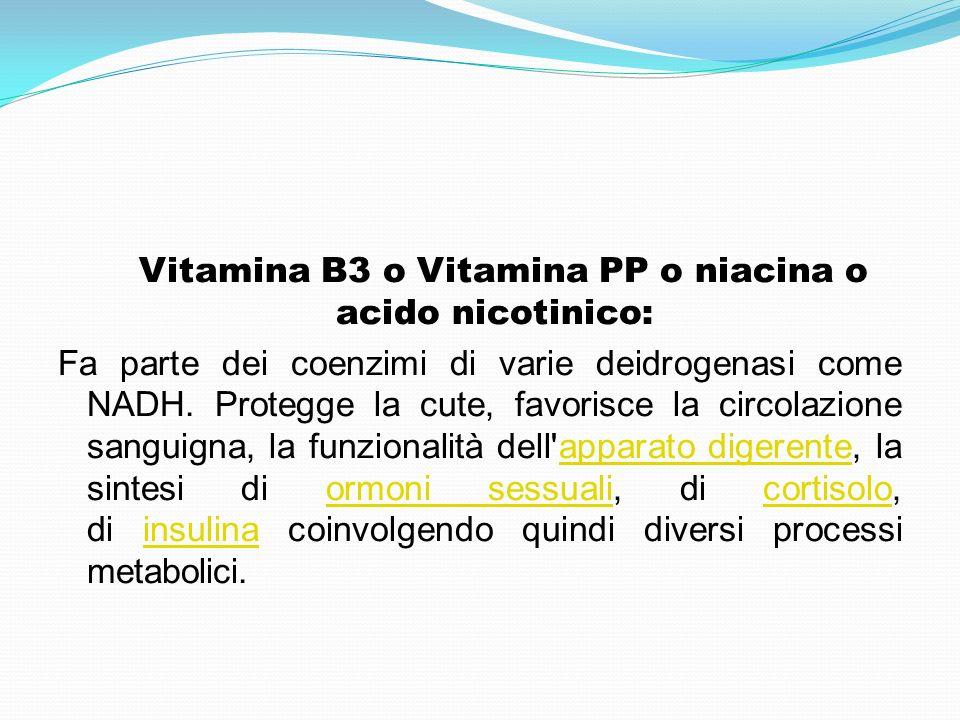 Vitamina B3 o Vitamina PP o niacina o acido nicotinico: Fa parte dei coenzimi di varie deidrogenasi come NADH. Protegge la cute, favorisce la circolaz