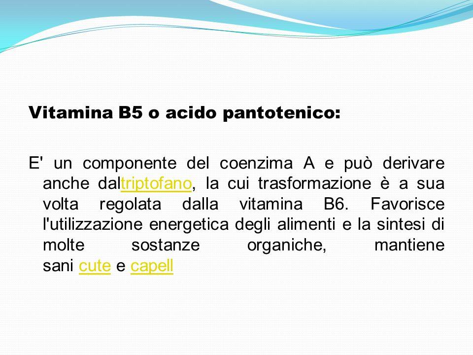 Vitamina B5 o acido pantotenico: E' un componente del coenzima A e può derivare anche daltriptofano, la cui trasformazione è a sua volta regolata dall