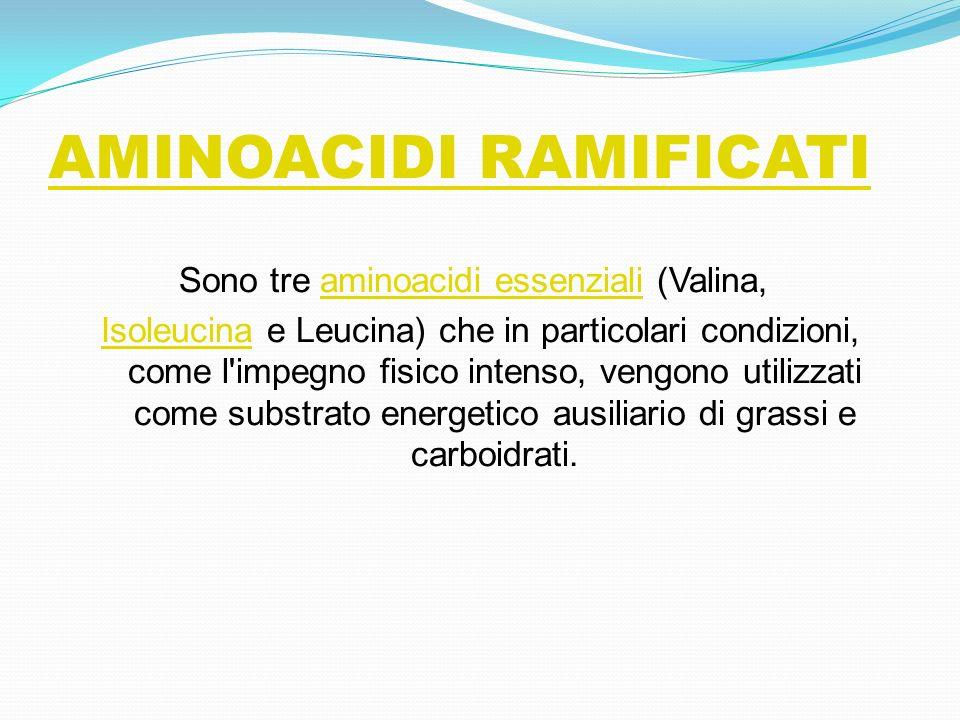 AMINOACIDI RAMIFICATI Sono tre aminoacidi essenziali (Valina, aminoacidi essenziali IsoleucinaIsoleucina e Leucina) che in particolari condizioni, com
