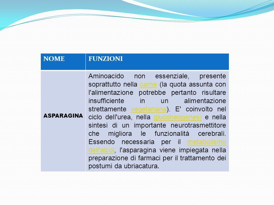 NOMEFUNZIONI ASPARAGINA Aminoacido non essenziale, presente soprattutto nella carne (la quota assunta con l'alimentazione potrebbe pertanto risultare