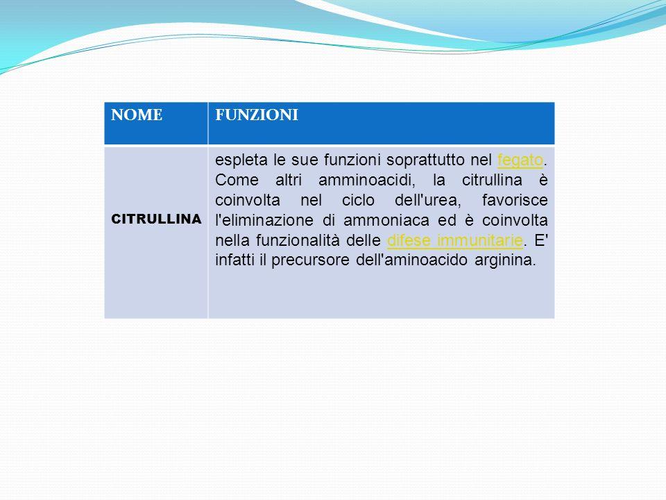 NOMEFUNZIONI CITRULLINA espleta le sue funzioni soprattutto nel fegato. Come altri amminoacidi, la citrullina è coinvolta nel ciclo dell'urea, favoris