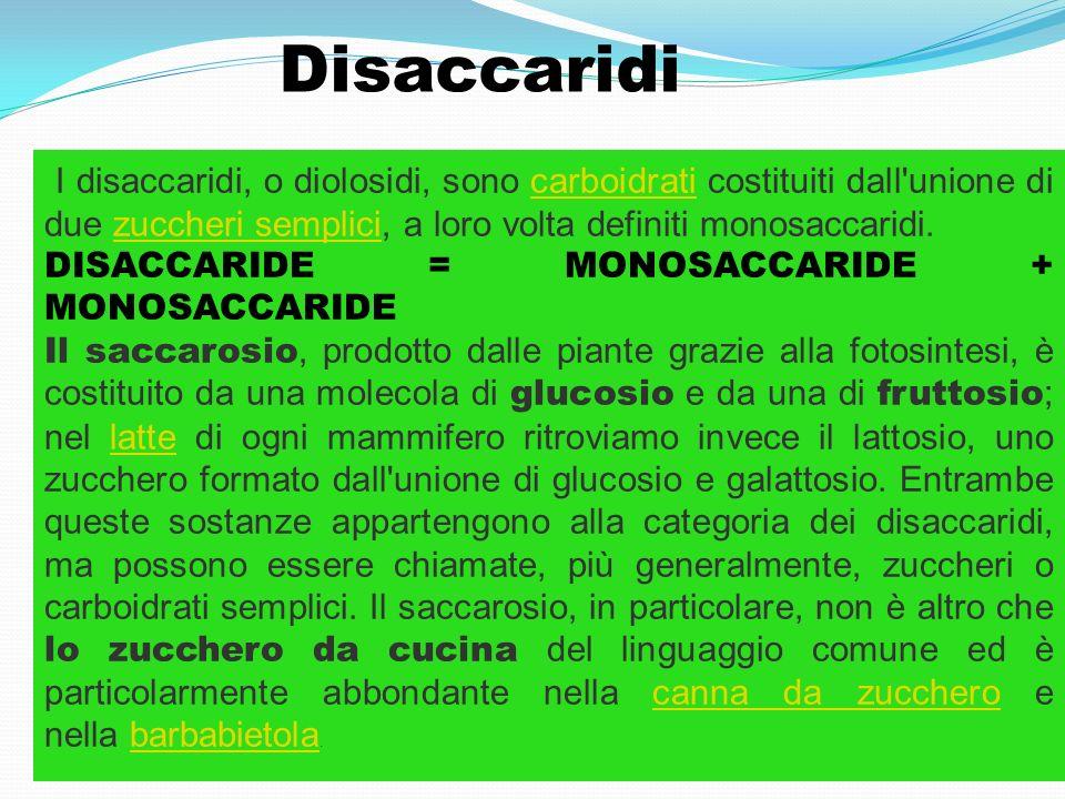 Disaccaridi I disaccaridi, o diolosidi, sono carboidrati costituiti dall'unione di due zuccheri semplici, a loro volta definiti monosaccaridi.carboidr