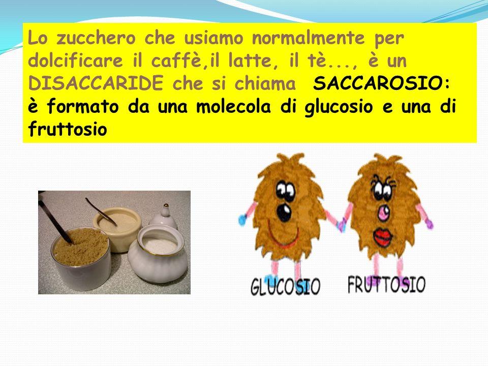 Lo zucchero che usiamo normalmente per dolcificare il caffè,il latte, il tè..., è un DISACCARIDE che si chiama SACCAROSIO: è formato da una molecola d