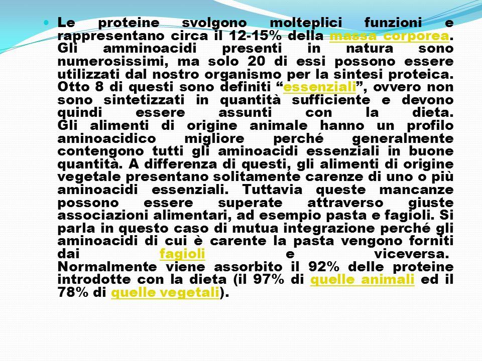 Le proteine svolgono molteplici funzioni e rappresentano circa il 12-15% della massa corporea. Gli amminoacidi presenti in natura sono numerosissimi,