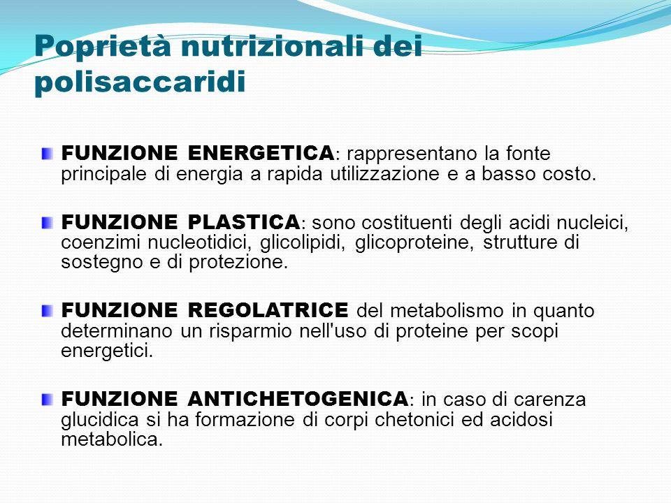 Poprietà nutrizionali dei polisaccaridi FUNZIONE ENERGETICA : rappresentano la fonte principale di energia a rapida utilizzazione e a basso costo. FUN