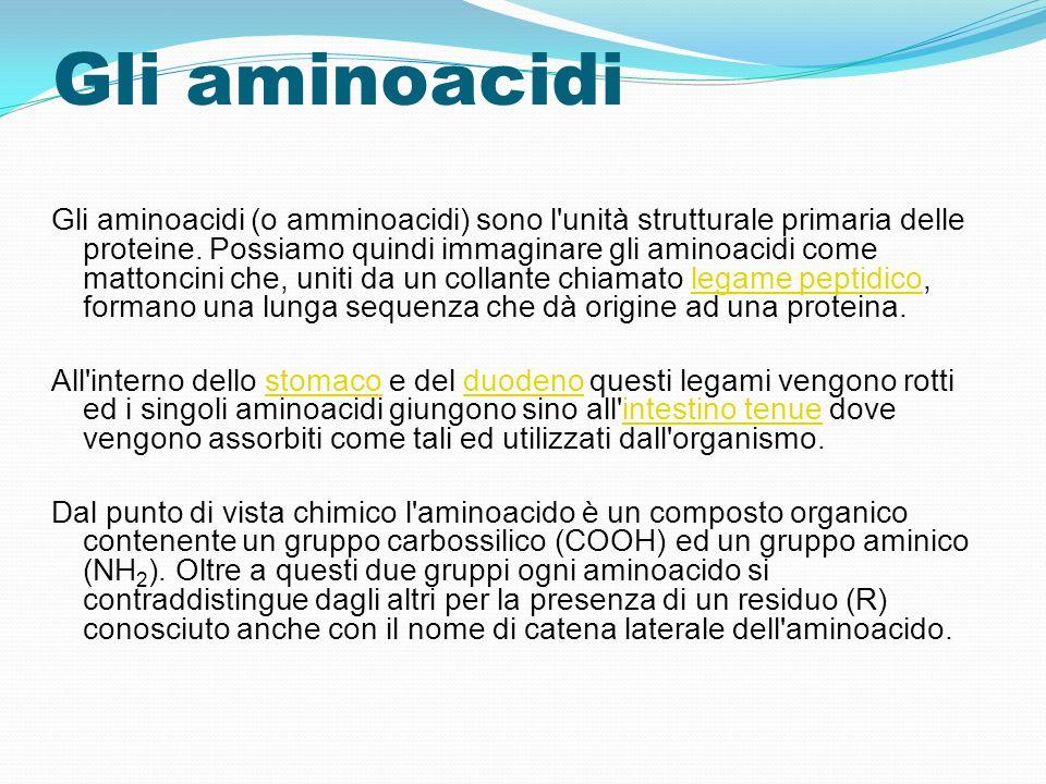 Gli aminoacidi Gli aminoacidi (o amminoacidi) sono l'unità strutturale primaria delle proteine. Possiamo quindi immaginare gli aminoacidi come mattonc