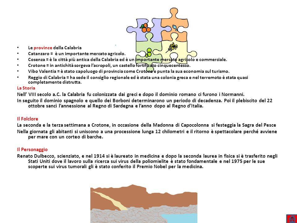 Le province della Calabria Catanzaro = è un importante mercato agricolo. Cosenza = è la città più antica della Calabria ed è un importante mercato agr