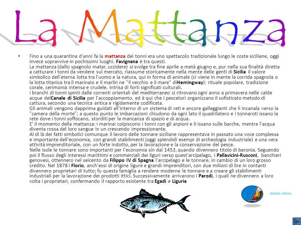 Fino a una quarantina d'anni fa la mattanza dei tonni era uno spettacolo tradizionale lungo le coste siciliane, oggi invece sopravvive in pochissimi l