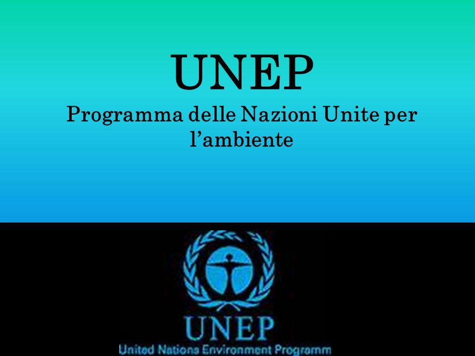 UNEP Programma delle Nazioni Unite per lambiente