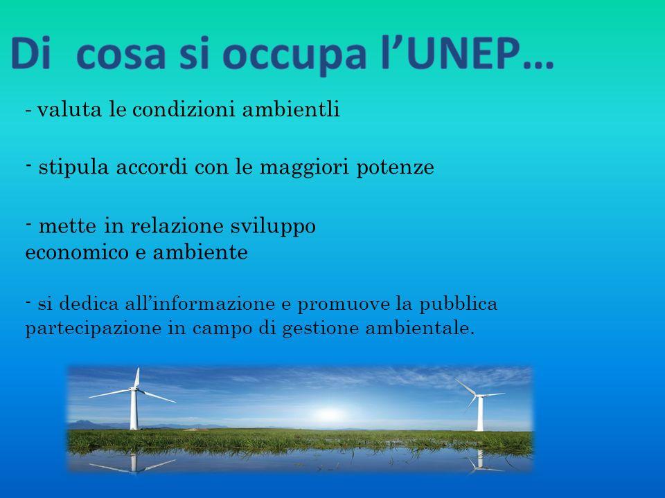 - si dedica allinformazione e promuove la pubblica partecipazione in campo di gestione ambientale. - valuta le condizioni ambientli - stipula accordi