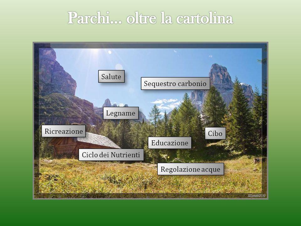 Sequestro carbonio Ciclo dei Nutrienti Cibo Legname RicreazioneEducazioneRegolazione acque Salute