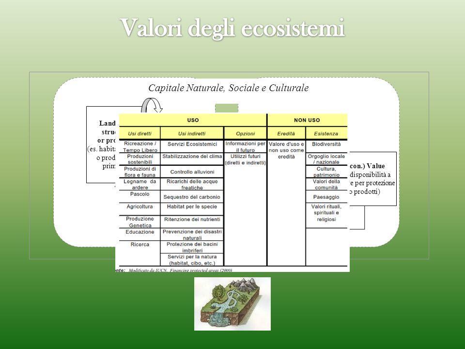 Capitale Naturale, Sociale e Culturale Landscape structure or processes (es. habitat forestale o produttività primaria) Landscape function (capacity)