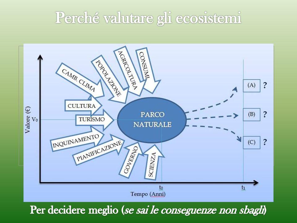 Economia Sociologia Ecologia Capitale Naturale, Sociale e Culturale Landscape structure or processes (es. habitat forestale o produttività primaria) L