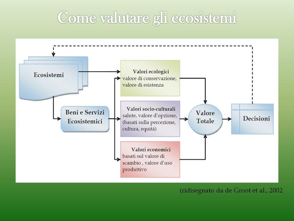 (ridisegnato da de Groot et al., 2002