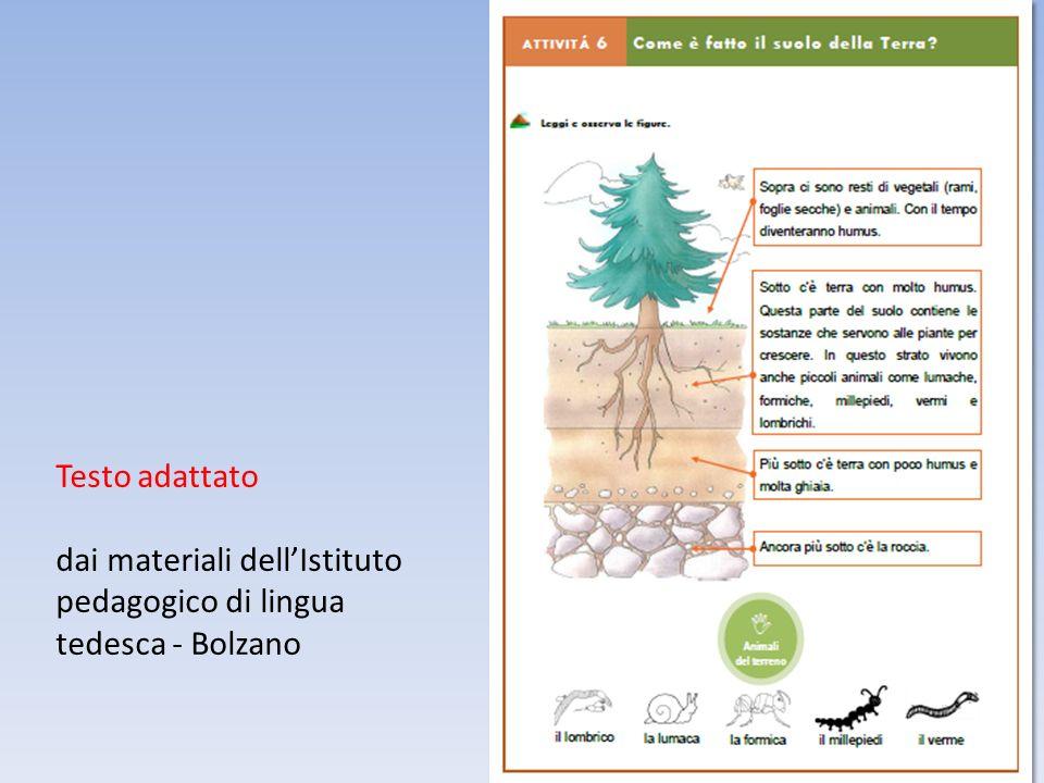 Testo adattato dai materiali dellIstituto pedagogico di lingua tedesca - Bolzano