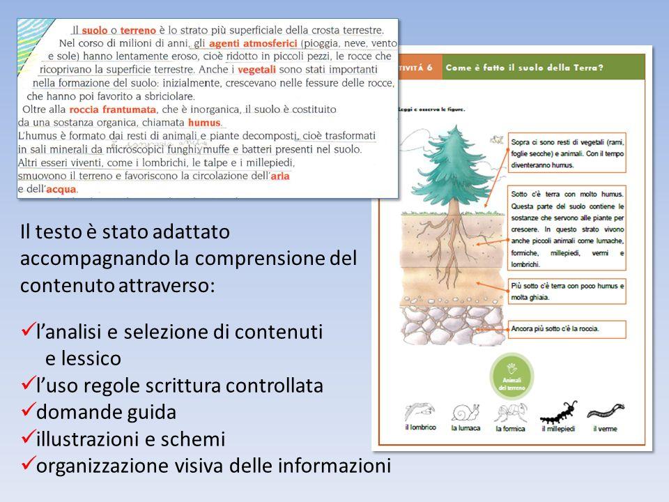 Il testo è stato adattato accompagnando la comprensione del contenuto attraverso: lanalisi e selezione di contenuti e lessico luso regole scrittura co