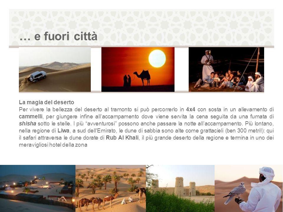 … e fuori città La magia del deserto Per vivere la bellezza del deserto al tramonto si può percorrerlo in 4x4 con sosta in un allevamento di cammelli,