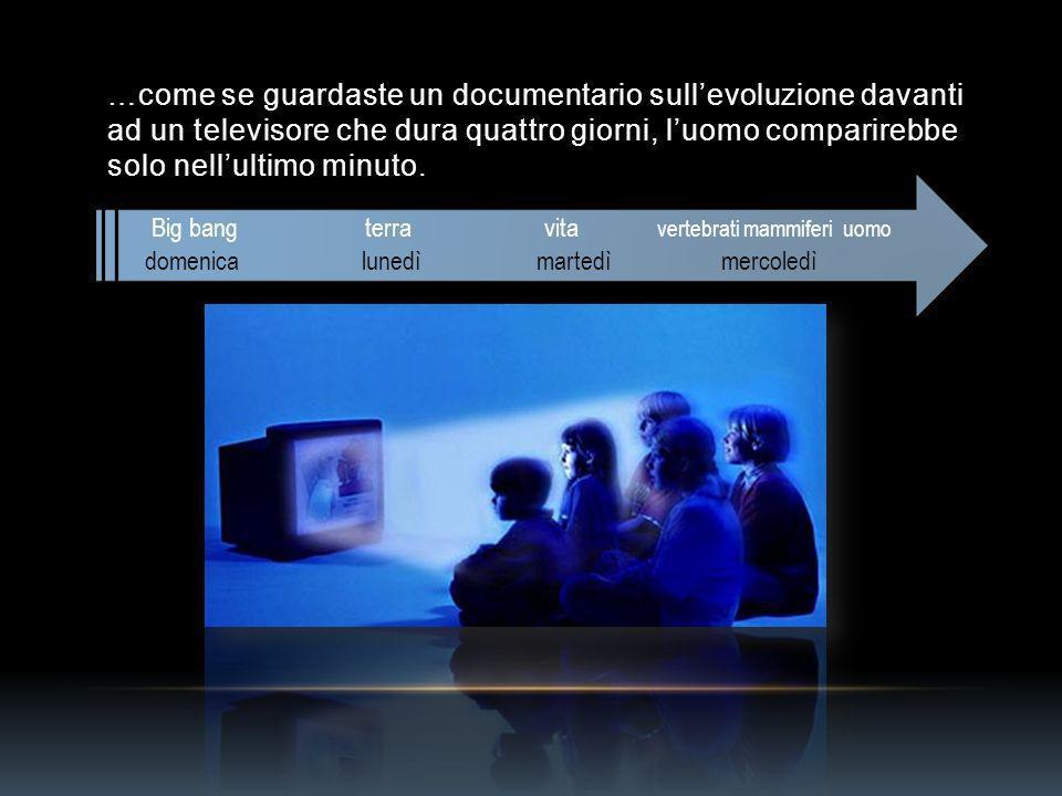 …come se guardaste un documentario sullevoluzione davanti ad un televisore che dura quattro giorni, luomo comparirebbe solo nellultimo minuto.
