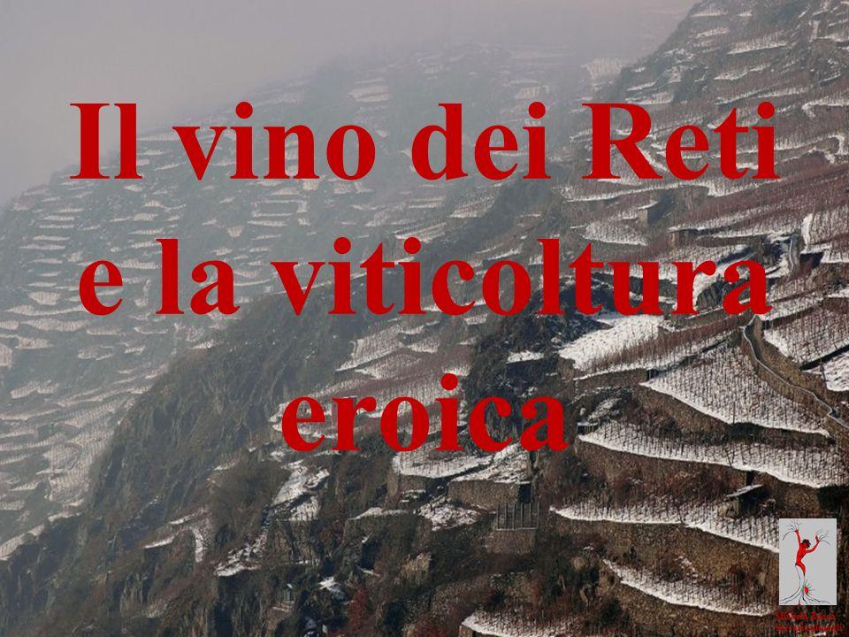 Michela Zucca Servizi culturali Il vino dei Reti e la viticoltura eroica