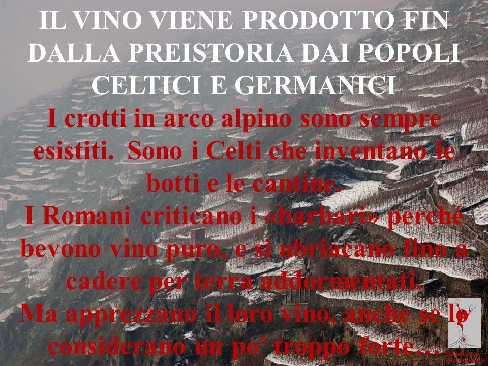 Michela Zucca Servizi culturali IL VINO VIENE PRODOTTO FIN DALLA PREISTORIA DAI POPOLI CELTICI E GERMANICI I crotti in arco alpino sono sempre esistit