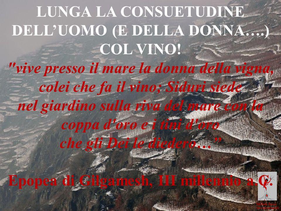 Michela Zucca Servizi culturali LUNGA LA CONSUETUDINE DELLUOMO (E DELLA DONNA….) COL VINO!