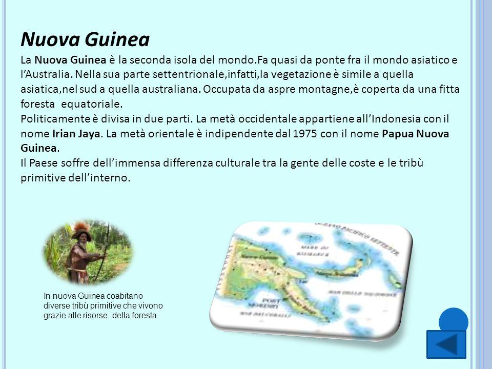 Nuova Guinea La Nuova Guinea è la seconda isola del mondo.Fa quasi da ponte fra il mondo asiatico e lAustralia. Nella sua parte settentrionale,infatti
