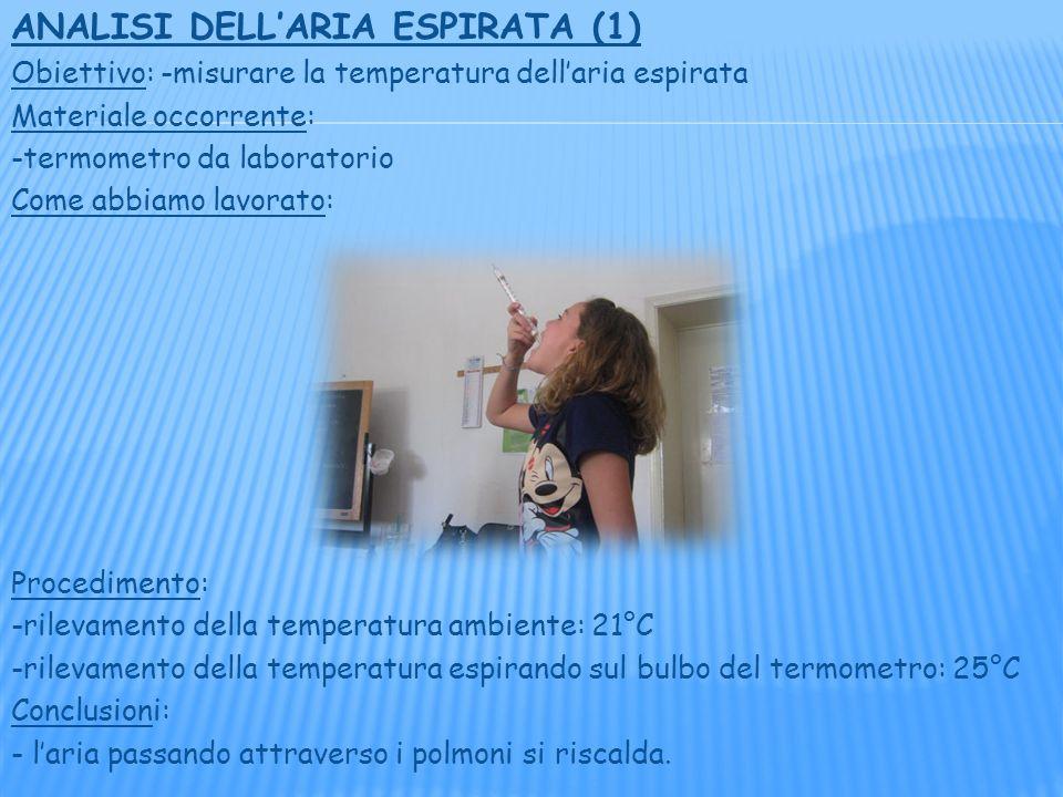 ANALISI DELLARIA ESPIRATA (1) Obiettivo: -misurare la temperatura dellaria espirata Materiale occorrente: -termometro da laboratorio Come abbiamo lavorato: Procedimento: -rilevamento della temperatura ambiente: 21°C -rilevamento della temperatura espirando sul bulbo del termometro: 25°C Conclusioni: - laria passando attraverso i polmoni si riscalda.