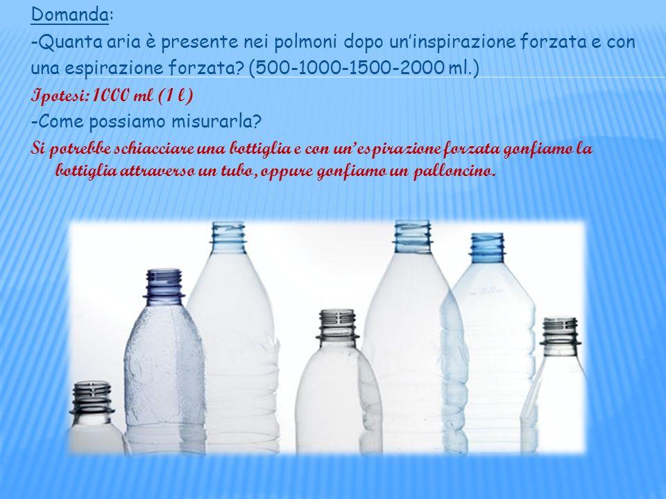 LARIA NEI POLMONI Obiettivo: -misurare laria contenuta nei polmoni Materiale occorrente: -una vaschetta di plastica -un tubo di gomma -bottiglie di diverso volume Come abbiamo lavorato: