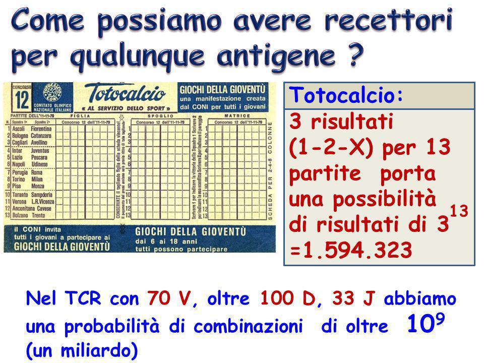 Totocalcio: 3 risultati (1-2-X) per 13 partite porta una possibilità di risultati di 3 =1.594.323 13 Nel TCR con 70 V, oltre 100 D, 33 J abbiamo una p