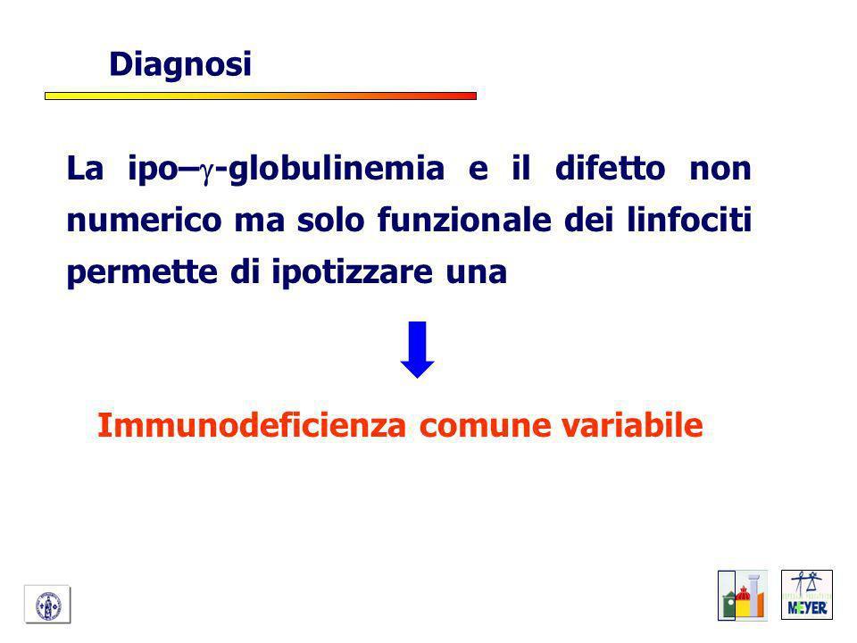 La ipo– -globulinemia e il difetto non numerico ma solo funzionale dei linfociti permette di ipotizzare una Immunodeficienza comune variabile Diagnosi
