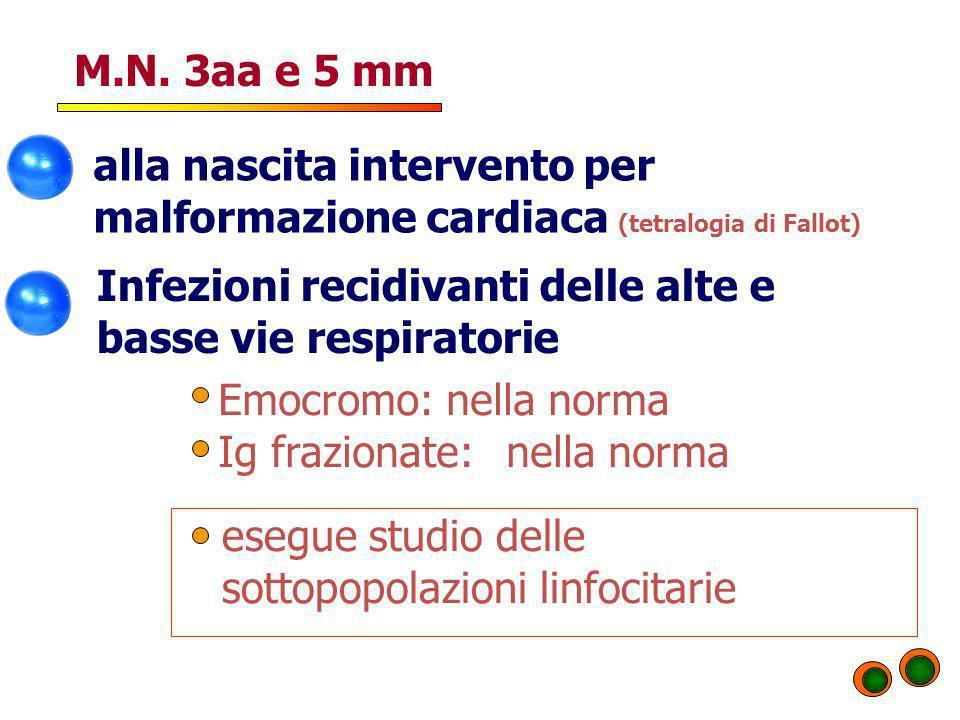 M.N. 3aa e 5 mm alla nascita intervento per malformazione cardiaca (tetralogia di Fallot) Infezioni recidivanti delle alte e basse vie respiratorie Em