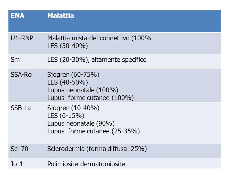 ENAMalattia U1-RNPMalattia mista del connettivo (100% LES (30-40%) SmLES (20-30%), altamente specifico SSA-RoSjogren (60-75%) LES (40-50%) Lupus neona
