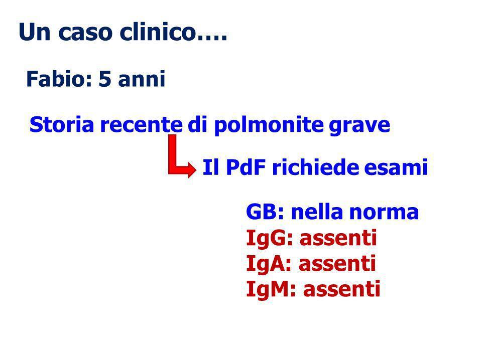 Un caso clinico…. Fabio: 5 anni Storia recente di polmonite grave Il PdF richiede esami GB: nella norma IgG: assenti IgA: assenti IgM: assenti