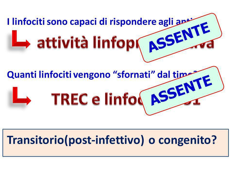I linfociti sono capaci di rispondere agli antigeni? Quanti linfociti vengono sfornati dal timo? ASSENTE Transitorio(post-infettivo) o congenito?