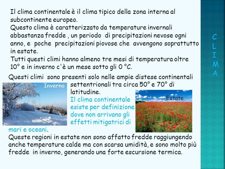 Il clima continentale è il clima tipico della zona interna al subcontinente europeo. Questo clima è caratterizzato da temperature invernali abbastanza