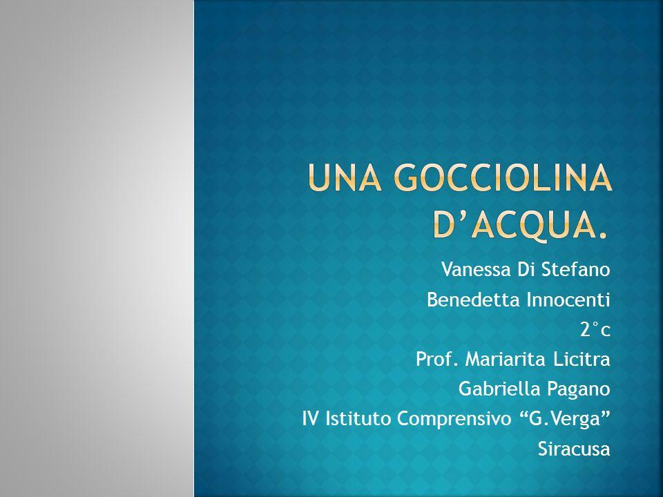 Vanessa Di Stefano Benedetta Innocenti 2°c Prof. Mariarita Licitra Gabriella Pagano IV Istituto Comprensivo G.Verga Siracusa