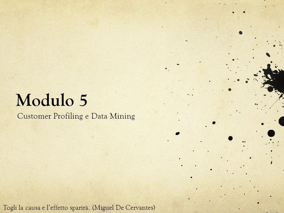 Modulo 5 Customer Profiling e Data Mining Togli la causa e leffetto sparirà. (Miguel De Cervantes)