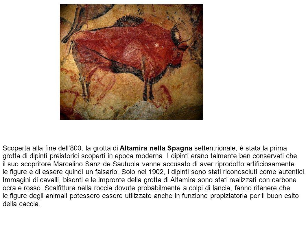 Scoperta alla fine dell'800, la grotta di Altamira nella Spagna settentrionale, è stata la prima grotta di dipinti preistorici scoperti in epoca moder