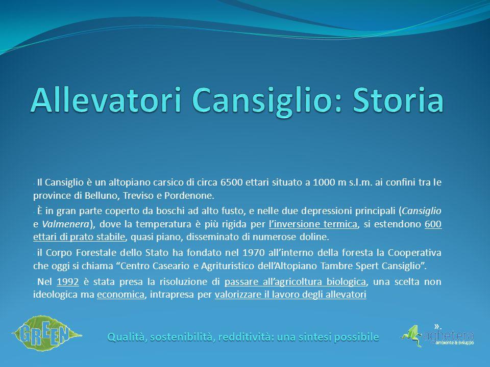 Il Cansiglio è un altopiano carsico di circa 6500 ettari situato a 1000 m s.l.m. ai confini tra le province di Belluno, Treviso e Pordenone. È in gran