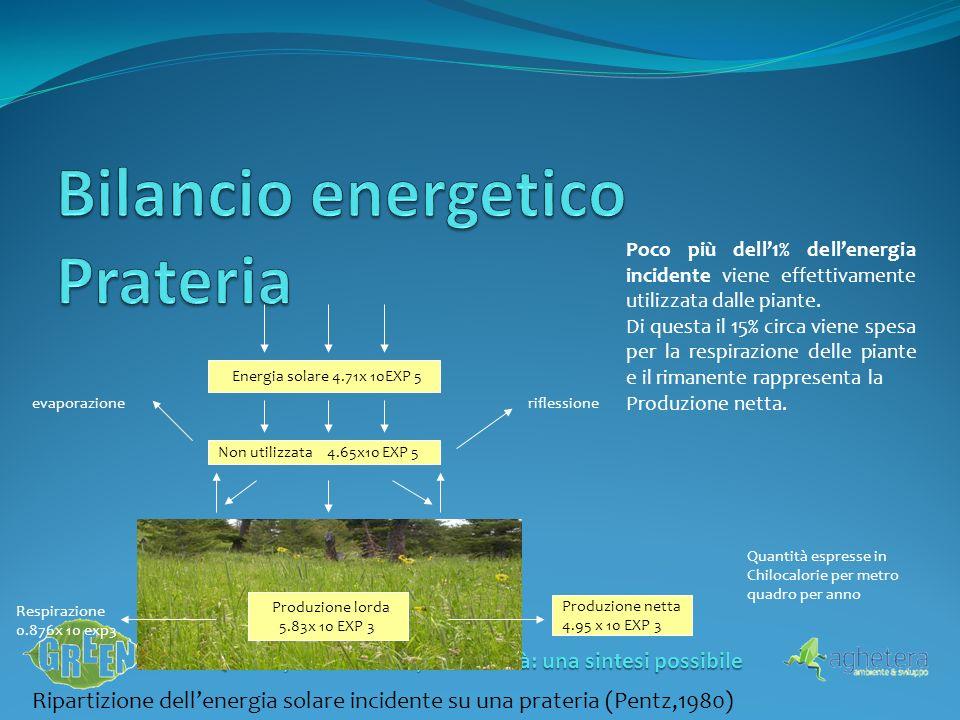 Qualità, sostenibilità, redditività: una sintesi possibile Ripartizione dellenergia solare incidente su una prateria (Pentz,1980) Non utilizzata 4.65x10 EXP 5 Energia solare 4.71x 10EXP 5 riflessioneevaporazione Produzione lorda 5.83x 10 EXP 3 Produzione netta 4.95 x 10 EXP 3 Respirazione 0.876x 10 exp3 Quantità espresse in Chilocalorie per metro quadro per anno Poco più dell1% dellenergia incidente viene effettivamente utilizzata dalle piante.